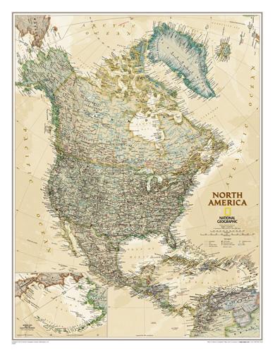 North America Executive